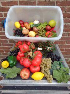 Plastic groente en fruit -