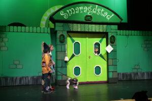 Stadsmuur en poort Smaragdstad -